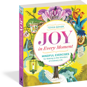 Joy in Every Moment by Tzivia Gover